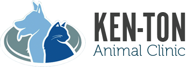 Ken-Ton Animal Clinic